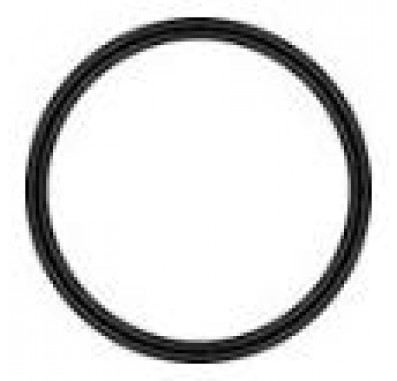 Everpure EV311240 Water Filter O-Ring (4.125-Inch Diameter)