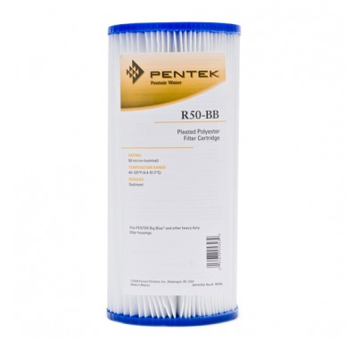 Pentek R50-BB Pleated Polyester Water Filters (9-3/4-inch x 4-1/2-inch)