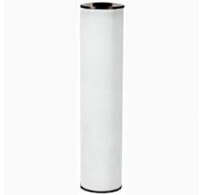 Watts FPIR-BB-20 Whole House Replacement Filter Cartridge