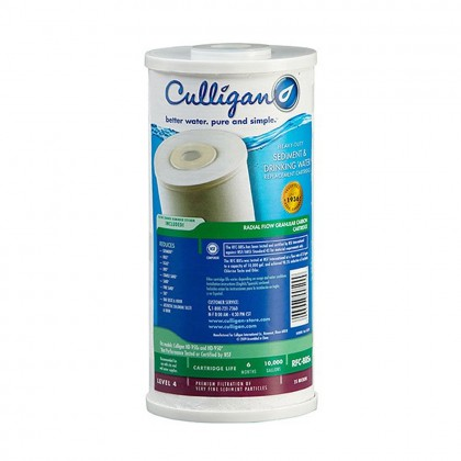 Culligan / Ametek RFC-BB Water Filters (9-3/4-inch x 4-1/2-inch)