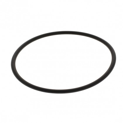 Doulton W2390009 O-Ring Gasket for Doulton HIP Housings