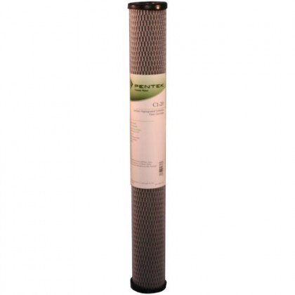 Pentek C1-20 Carbon Water Filters (20-inch x 2-1/2-inch)