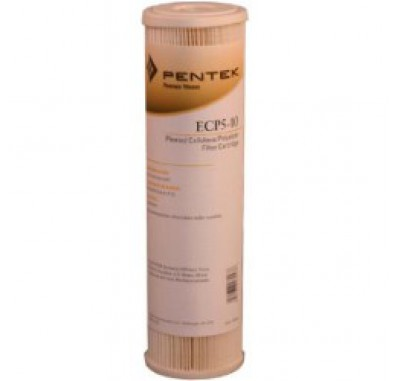 Ametek / Pentek CP-10 Pleated Sediment Water Filter (9-3/4-inch x 2-5/8-inch)