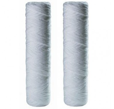 OmniFilter RS2DS Whole House Replacement Filter Cartridge (2-Pack)