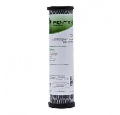 Pentek C-1 Carbon Water Filters (9.75-inch x 2.5-inch)