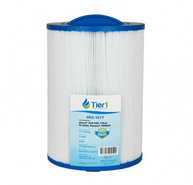 Tier1 Waterway 817-0050 Pool and Spa Filter Replacement