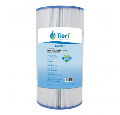 Tier1 Waterway Clearwater 817-0075N Comparable Pool and Spa Filter Replacement