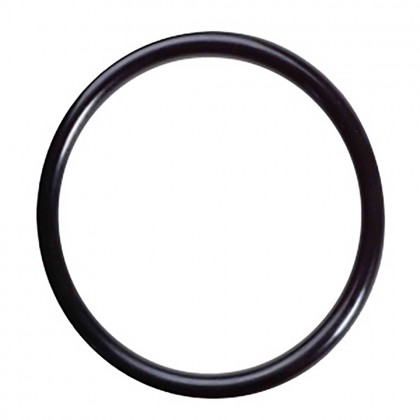Pentek O-Ring Kit 163538 for UVS110 Quartz Sleeve