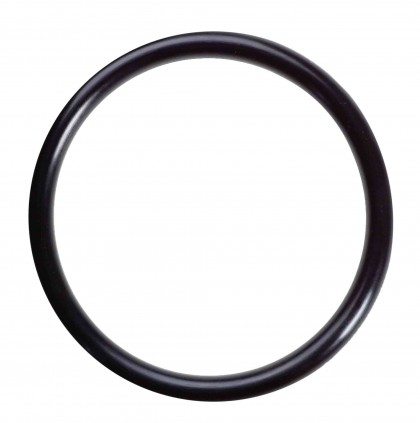 Omnipure Q-Series Head H-118 Large O-Ring