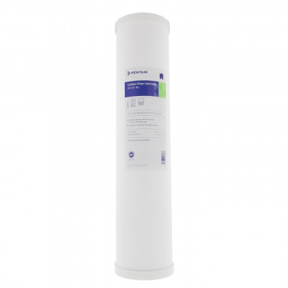 Pentek RFC-20BB Radial Flow Water Filters (20-inch x 4.5-inch) (Main Image)